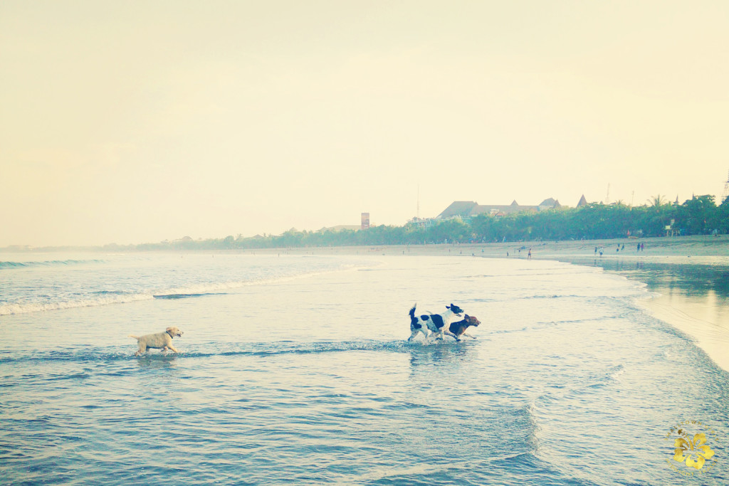Early morning low tide at Kuta beach_02