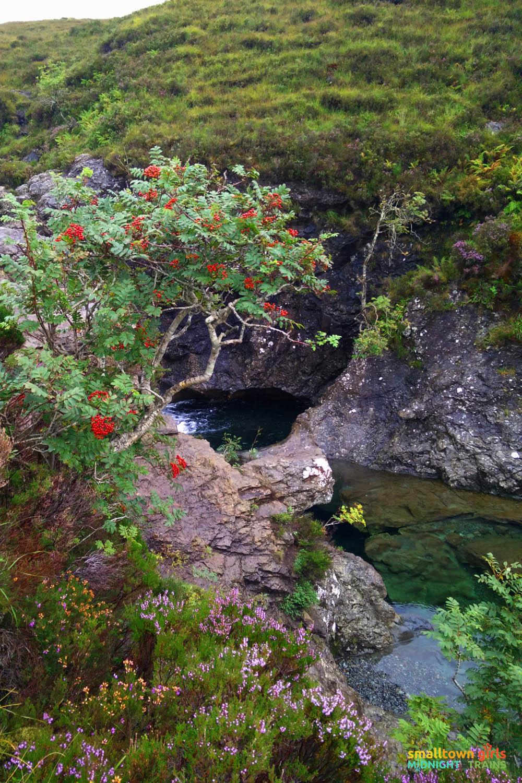 Scotland_Skye_Tour_Fairy Pools_12