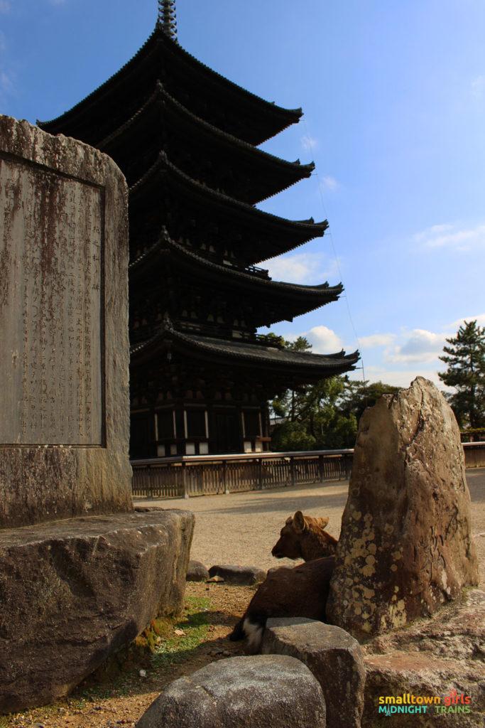 SGMT Japan Nara 10